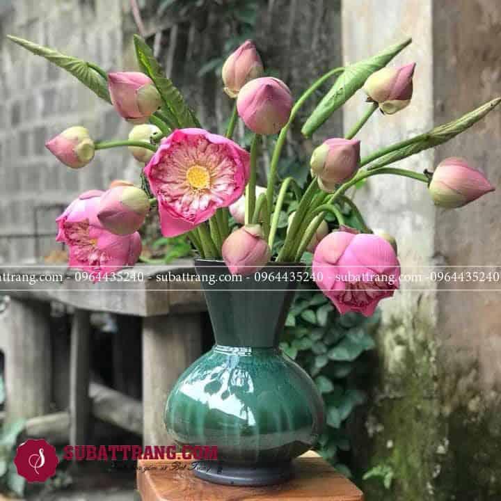 Bình hoa sen men hỏa biến dáng giỏ cua tinh tế sang trọng