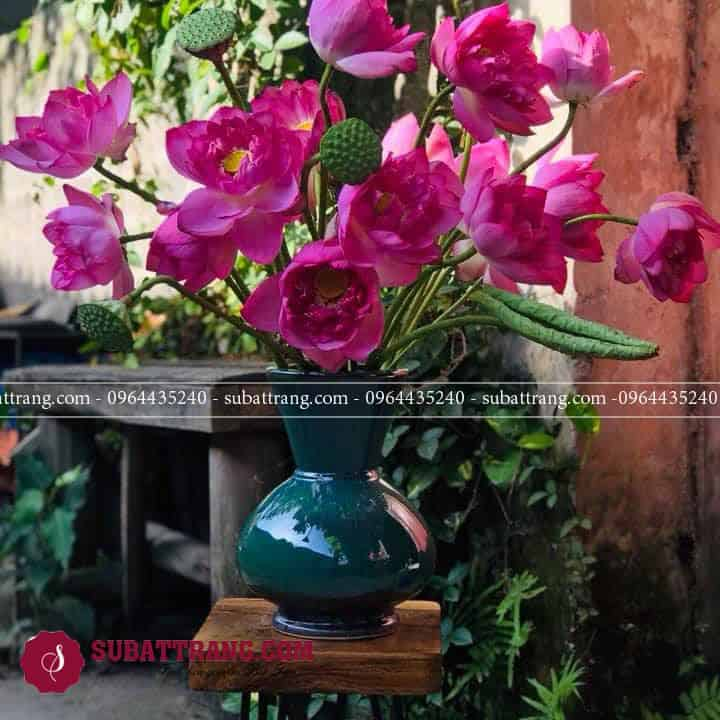 Bình hoa sen đẹp dáng giỏ cua tinh tế và thanh lịch
