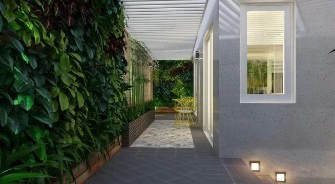 Vườn tường bên hông nhà tạo mảng xanh mát và mang lại hiệu quả để điều tiết nhiệt những khi thời tiết oi nóng,