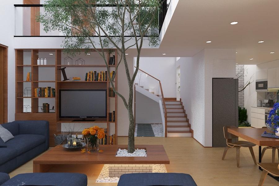Thiết kế phòng khách lệch tầng độc đáo có cây xanh trong nhà