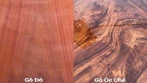 Gỗ gõ đỏ và gỗ óc chó với màu sắc khác biệt