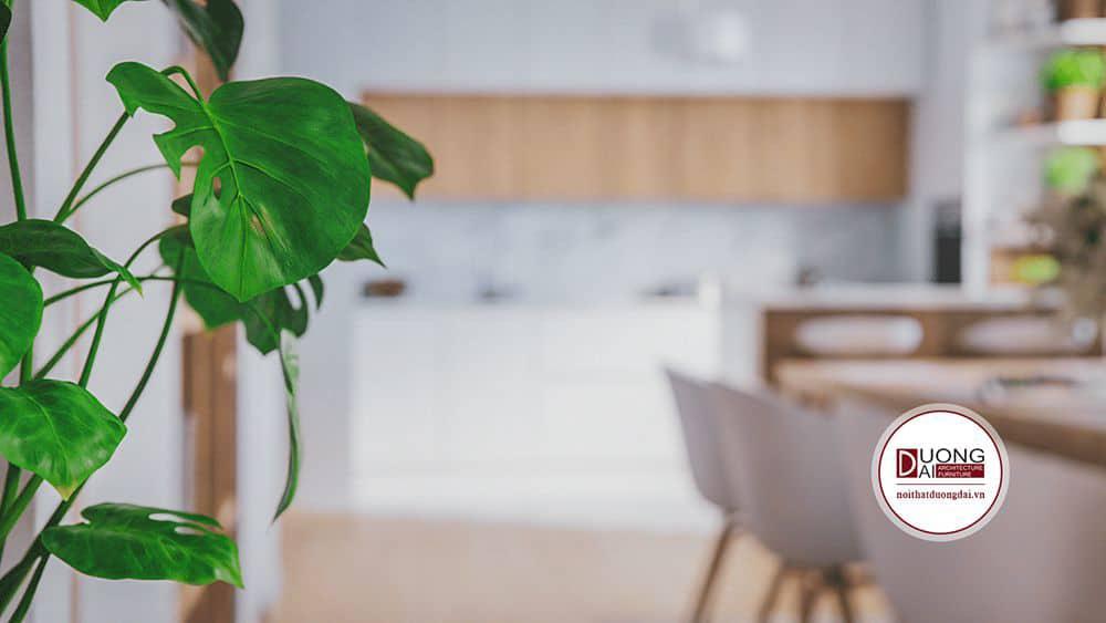Tủ bếp gỗ tự nhiên với màu sắc trang nhã, sang trọng
