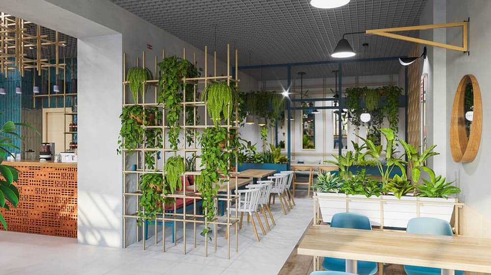 Quán cafe đầy lý tưởng với nhiều cây xanh tươi mát