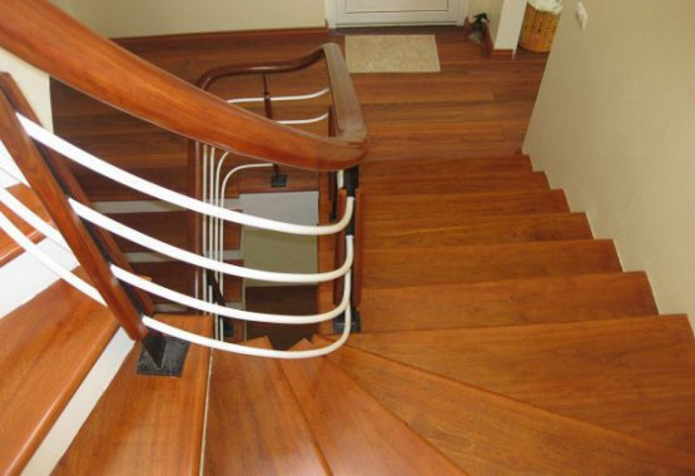 Gỗ chò chỉ là gì? Đặc điểm và ứng dụng của gỗ trong nội thất