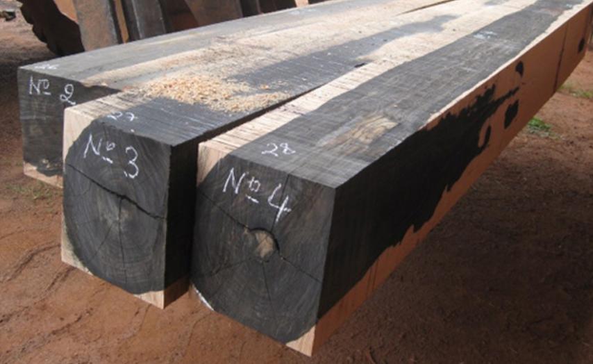 Gỗ sưa đen là nhóm gỗ sưa với giá trị cao