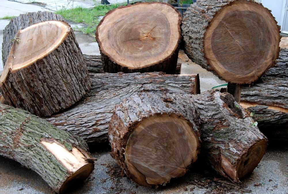đánh giá gỗ óc chó