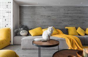 Gam màu vàng là gam màu tượng trưng cho sự tươi mới