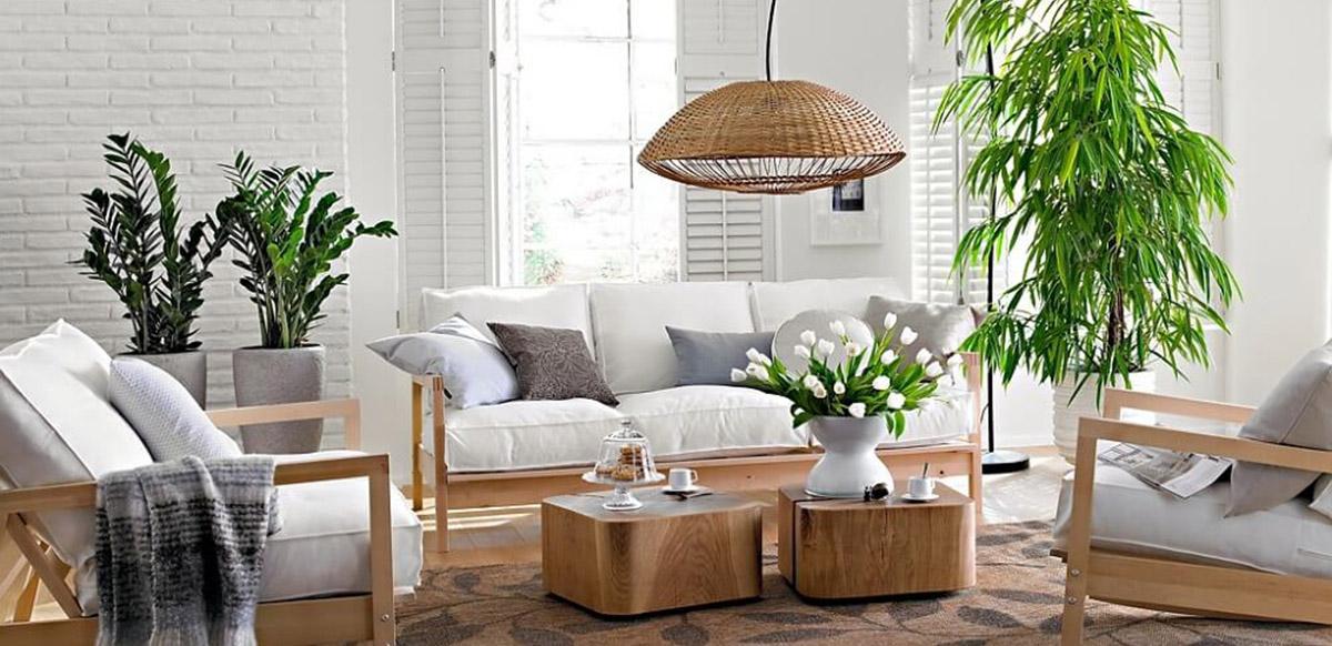 Cây cảnh dùng để trang trí nội thất phòng khách bạn nên hạn chế việc sử dụng những loại cây to và nằm ngay giữa phòng