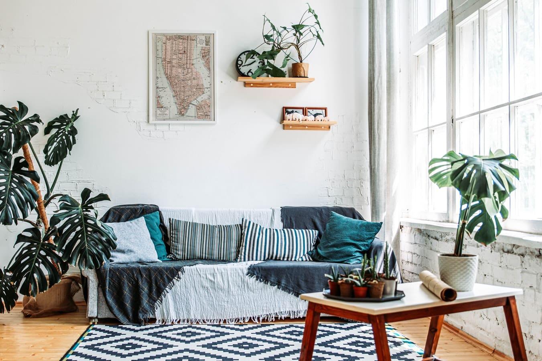 Trang trí phòng khách bằng cây xanh cùng tông màu với phòng khách