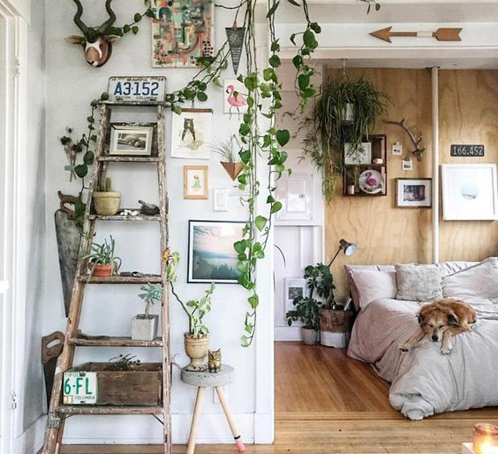 trang trí phòng ngủ với cây xanh vẫn luôn được ưa chuộng và được sử dụng rộng rãi.