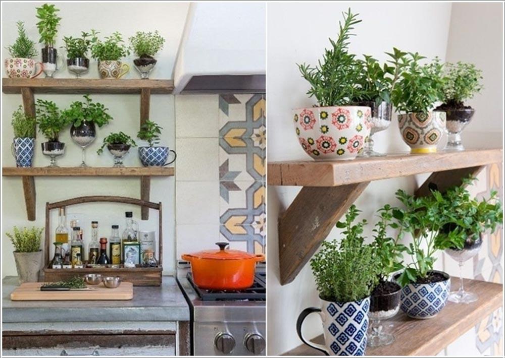 Màu sắc là một trong những yếu tố cực kỳ quan trọng khi lựa chọn cây phong thủy trong nhà bếp